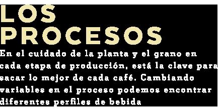 Los-Procesos